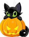 Halloween Story time & Cookie Decorating @ Library Allard Multipurpose Room