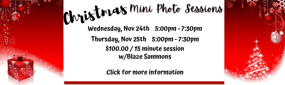 Mini Photo Sessions banner for website